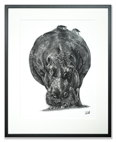 Print of a Hippo created by Stuart Duff