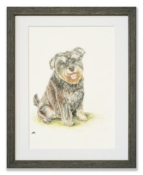 Watercolour painting of family pet