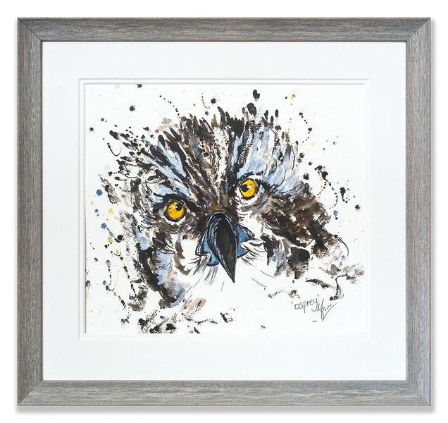 Original watercolour of an Osprey by Scottish Artist Mike Ross