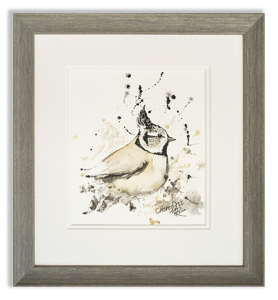 Watercolour of Crested Tit by Scottish Artist Mike Ross