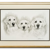 Pencil artwork of three dogs by Lesley Probart
