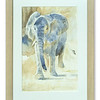 Original watercolour of Elephant