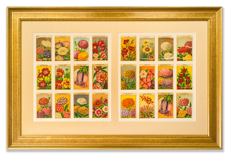French Flower Cards printed early 20th Century, artist unknown