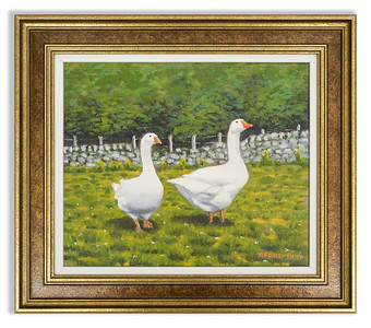 Original oil painting, White Geese at Rogie by Robert Forsyth