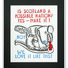 Is Scotland a Possible Nation limited edition print by Alasdair J Gray