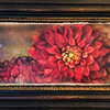 """Dahlia Red 373"" ~ Watercolor Paper. Enhanced with Encaustics & Oil Pastels."
