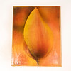 Tulip Yellow 002 Photograph Printed on Wood /Digital Art