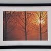 9846 framed
