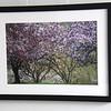 2056 framed
