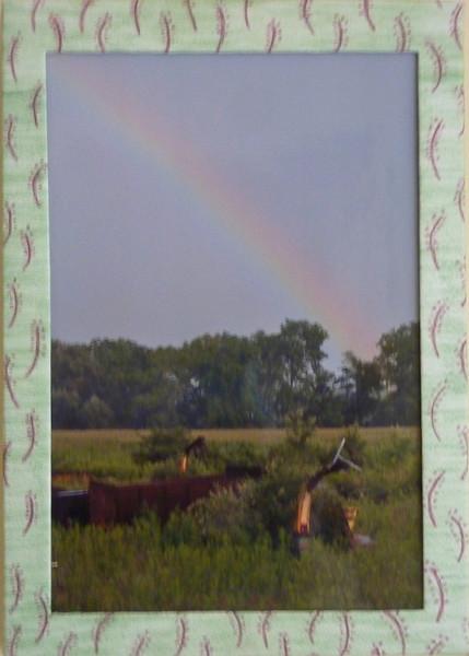 #61 Farm Rainbow (right)