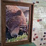"""Thinking Bear, 20x30"""""""