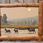 "Smokey Elk in Split Log, 18x24"""