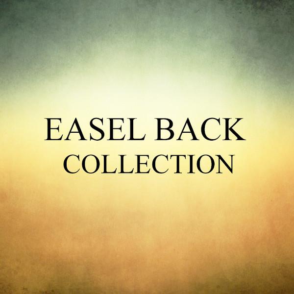 Cover - Easel Back