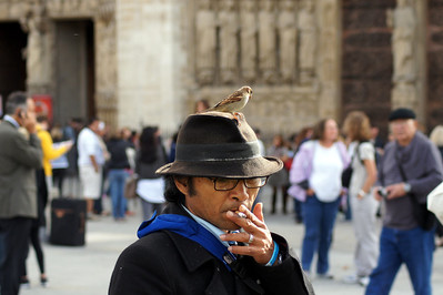 Birdman of  Notre Dame cathedral in Paris, France