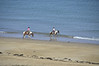 Horseback riders on the beach, vicinity Locquirec