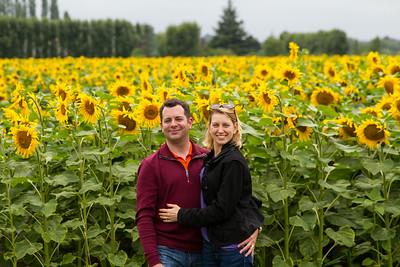 C&C w sunflowers 2