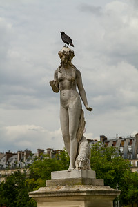 at the Tuileries