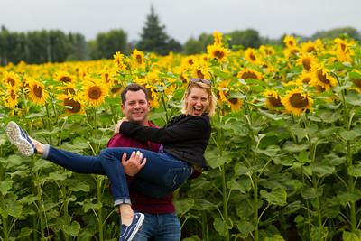 C&C w sunflowers