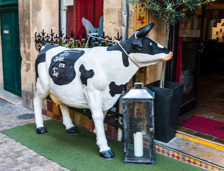 Aix en Provence-5