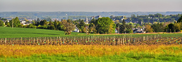 French Countryside Vineyards Everywhere