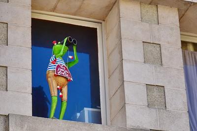 Frog Tourist