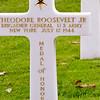 Theodore Roosevelt Jr. grave