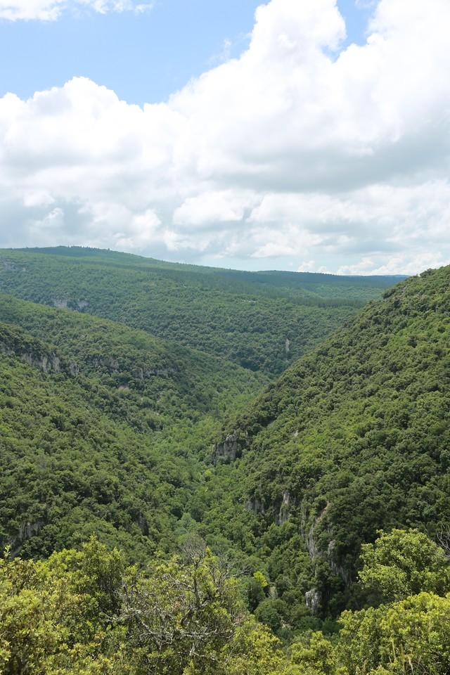Provence region, Sault, gorge