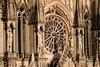 Reims Cathedral Notre Dame de Reims Closeup (2919) Marked
