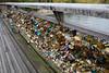 Paris Pointe Du Seine Unbreakable Love Closeup (6828) Marked