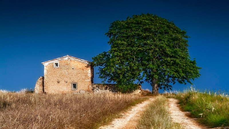 Old farm house; Provence; France