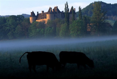 Chateau Montal at dawn with cows