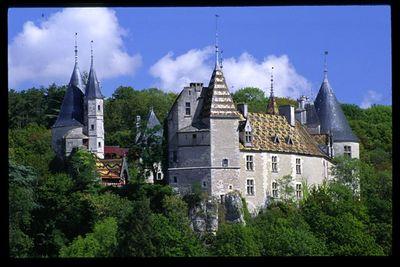 Chateau at La Rouchepot