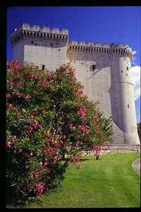 Chateaux fortress in Tarascon