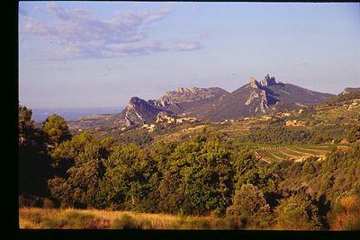 Provencal landscape near Suzette