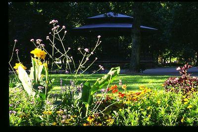 Parc du Contarde in summer