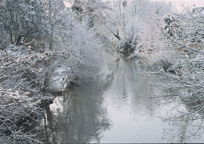 River Aar in winter
