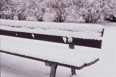 Parc du Contades bench
