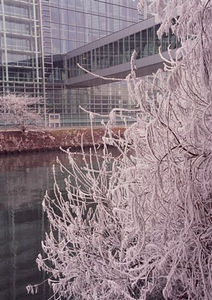 Ice storm, looking at the European Parliament, Feb 06