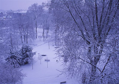 Parc du Contades from my window (blue filter)
