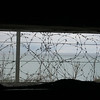 Barbed wire as seen from inside a bunker   (Photo by Ray)