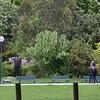 A park near the embassy