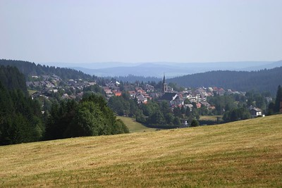Schönwald, from Escheck