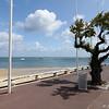 Arcachon_2012 06_4493537
