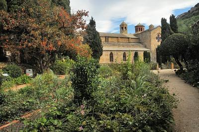 Abbaye de Fontfroide - Dans la roseraie