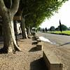 Avignon_2012 06_4493311