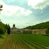 Avignon_2012 06_4493225