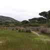 france;bonifacio;2009;pallombagia;