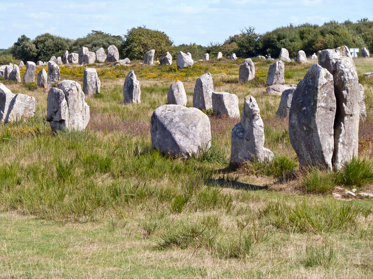 Standing stones (menhirs) of Carnac