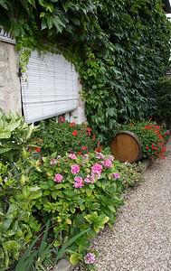 Domaine Michel Juillot, Mercurey
