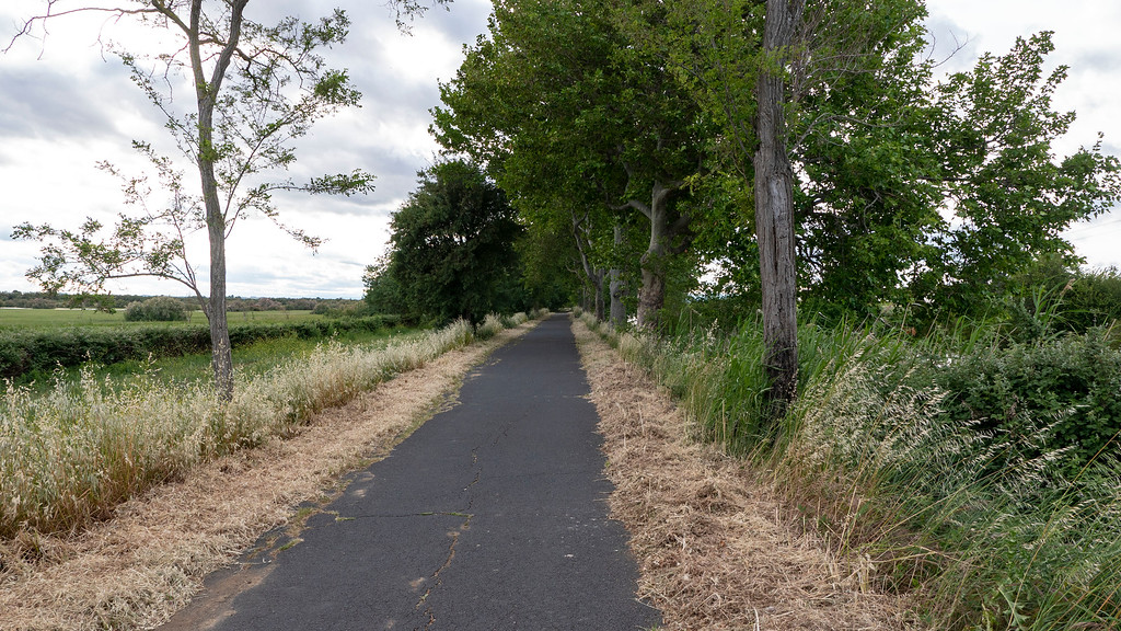 Path on the Canal du Midi for cycling or walking